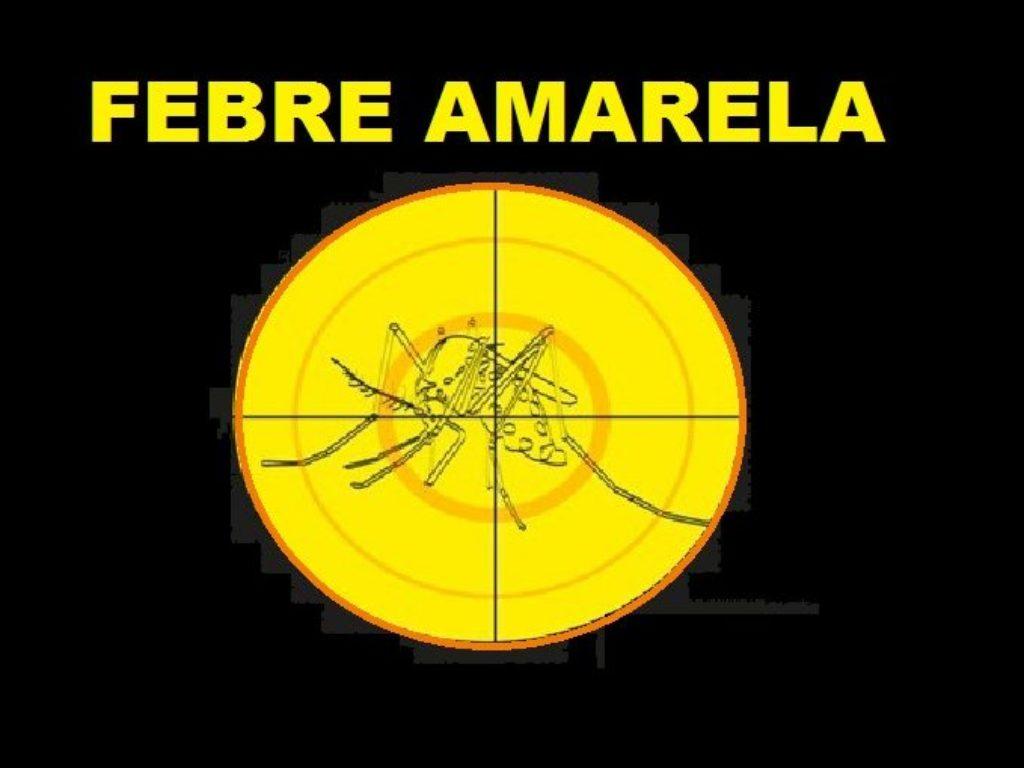 Febre-Amarela-saiba-mais-1000x509